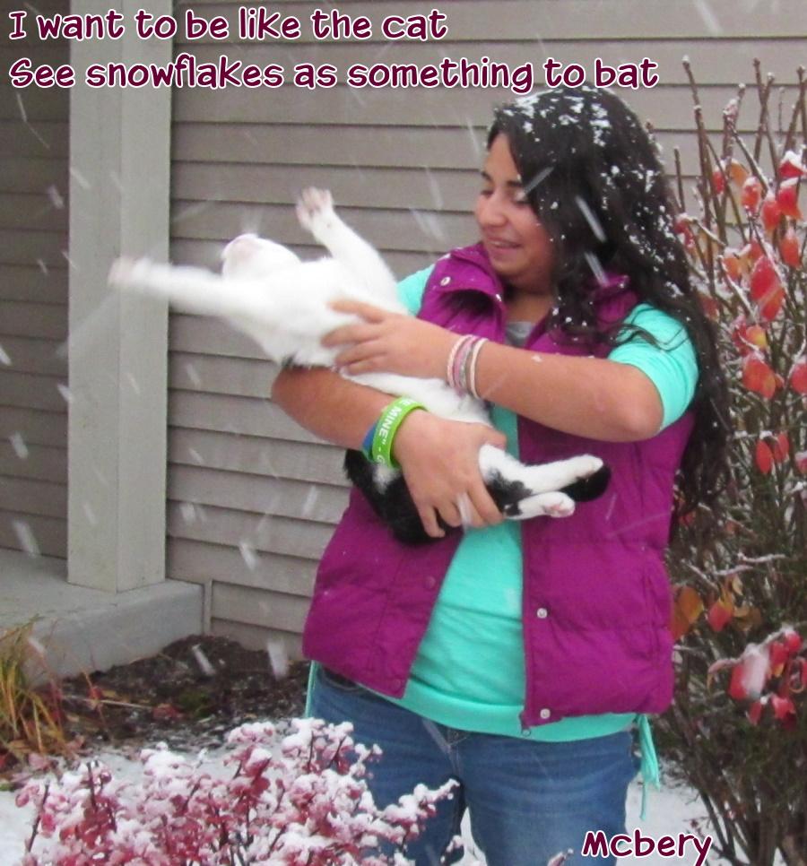 8-snowflakes-cat