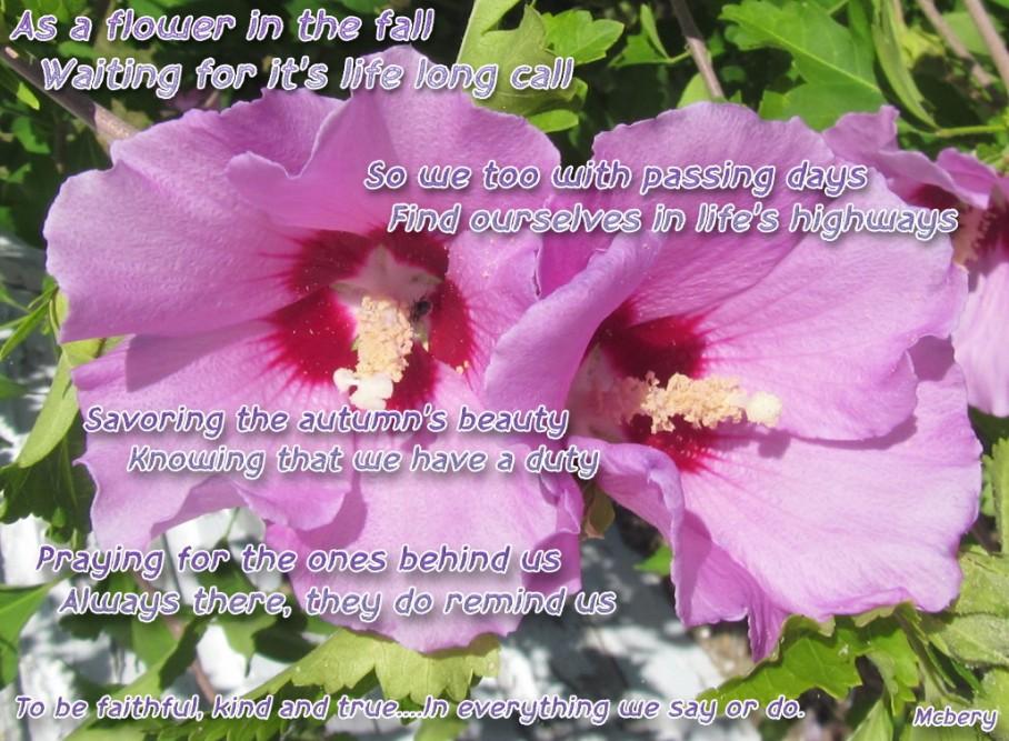 2 flower poem