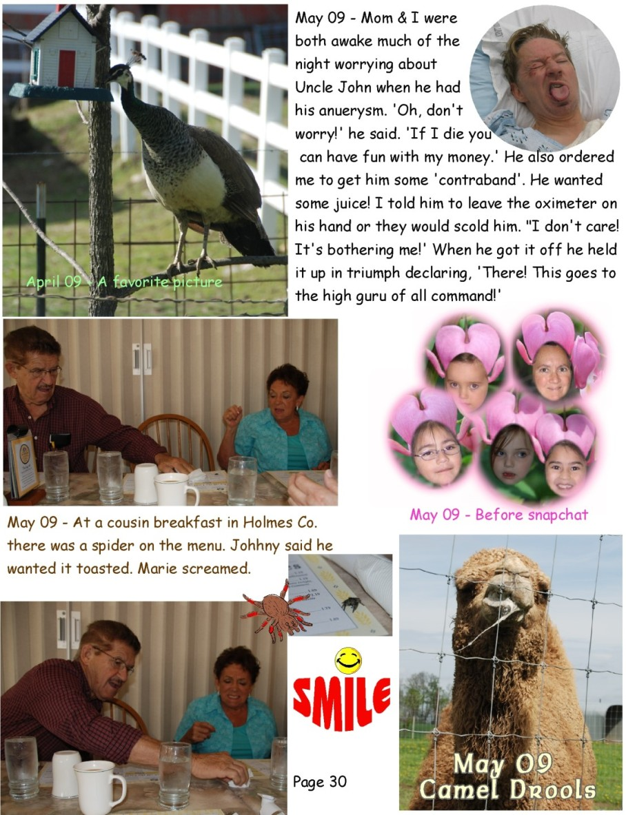 5 z laughter in the walls page 30