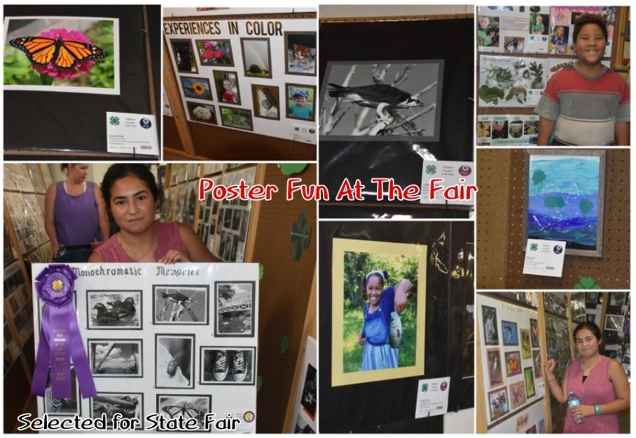 1 b fair state fair julie posters kids